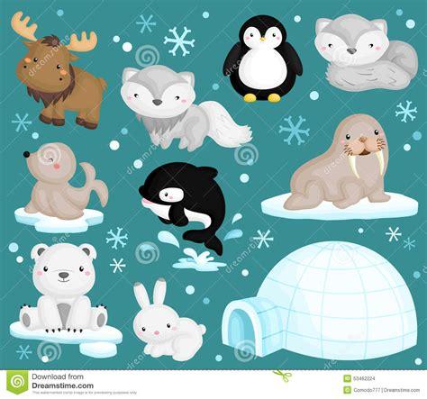 arctic animals stock vector illustration  arctic