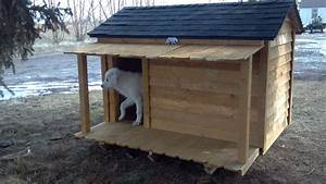 Our new dog house my great pyrenees pinterest for Great dog houses
