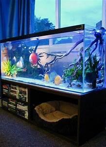 21  Stunning Indoor Aquarium Design Ideas For Inspiring