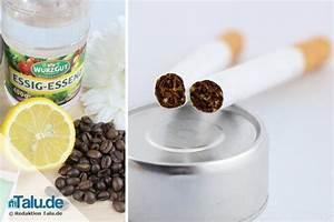 Zigarettengeruch Aus Wohnung Entfernen : rauchgeruch zigarettengeruch aus der wohnung entfernen ~ Watch28wear.com Haus und Dekorationen