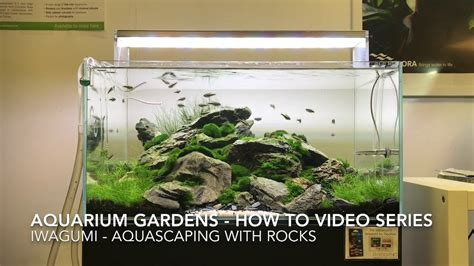 Aquascape How To by Iwagumi How To Aquascape With Rocks
