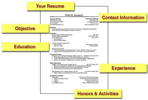 How To Get A With Your Resume by Top 5 Free Resume Templates That Will Get You The Crocktock