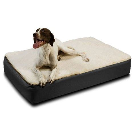 Large Orthopedic Bed by Pin By Thepuppy Org On Dogs And Puppies