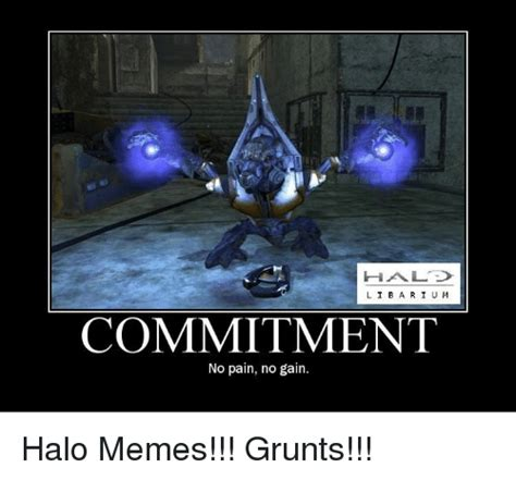 Halo Reach Memes - haa l i b commitment no pain no gain halo memes grunts meme on sizzle