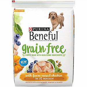 The Top 9 Best Affordable Grain Free Dog Foods Rover com