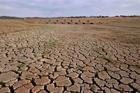 Foram encontrados 120 resultados de empresas relacionadas com a pesquisa realizada frutos secos. Chuvas de Março são suficientes para colmatar seca em ...