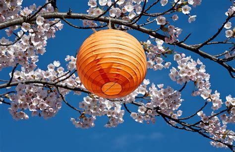 lanterne japonaise ooreka