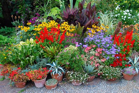 Free Garden Image by They Are Potty About Colours At Great Dixter The