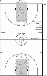 Le linee e le dimensioni di un campo da basket