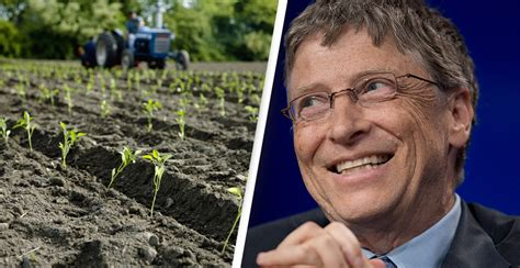 Bill Gates Is Now The Biggest Owner Of Farmland Across ...