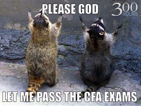 Cfa Meme - will you pass or fail your cfa level i tomorrow 300 hours your guide to the cfa exams