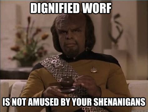 Worf Memes - dignified worf star trek pinterest memes