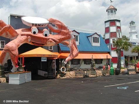 All You Can Eat Seafood Restaurants In Myrtle Beach Best
