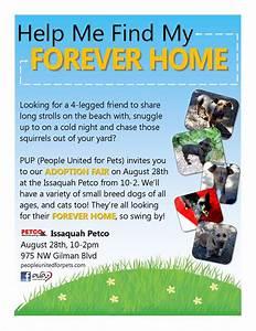 Pup Dog Rescue Flyers  U2013 Portfolio  Michelle Fears