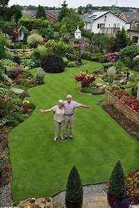 beautiful trees in pots lining a green space lawn or With amenagement petit jardin avec terrasse et piscine 7 le jardin paysagiste 36 exemples pour vous inspirer