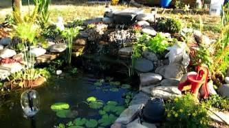 Garden Goldfish by My Goldfish Pond 2012 Garden Pond Fancy Goldfish
