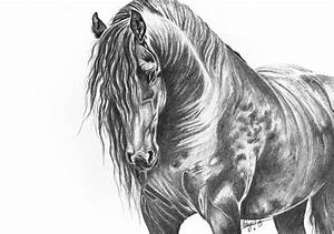 art print, graphite pencil drawing, horse, beautiful ...