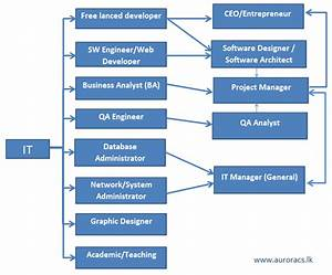 Available career paths in IT