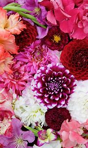 Free Floral Phone Wallpaper • British Flowers • Capture by ...