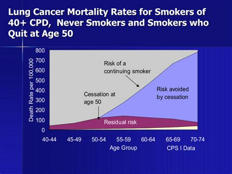 Copd Recovery After Quitting Smoking - Perokok r