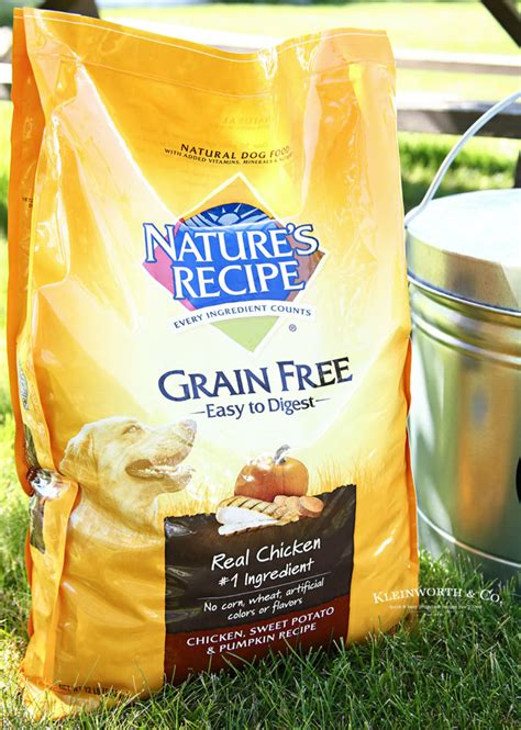 food dog galvanized container storage grain commonly asked questions