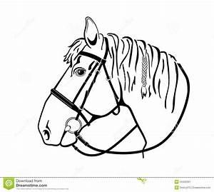Pferdekopf Schwarz Weiß : pferdekopf im geschirr schwarzweiss zeichnung stockbild bild von hippodrome springen 54432391 ~ Watch28wear.com Haus und Dekorationen