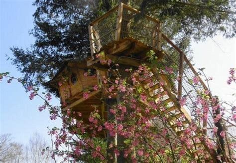 chambre d hote cabane dans les arbres semaine éco touristique en famille en chambre d 39 hôte