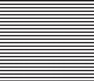 Black and White Stripes Horizontal fabric - sierra ...