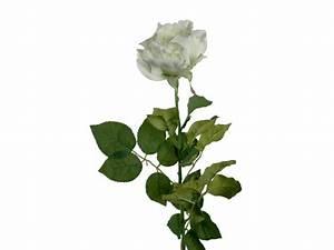 Rose Blanche Artificielle : rosa fleur artificielle tissu p tales blancs d coration la maison ~ Teatrodelosmanantiales.com Idées de Décoration