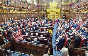 Peers divided over moves by MPs to extend abortion and ...