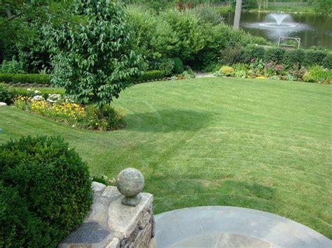 erba per giardino erba giardino prato