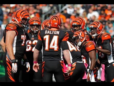 cincinnati bengals pump    era
