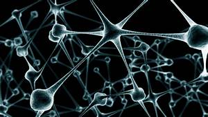 Neural Networks  Part 1  Background