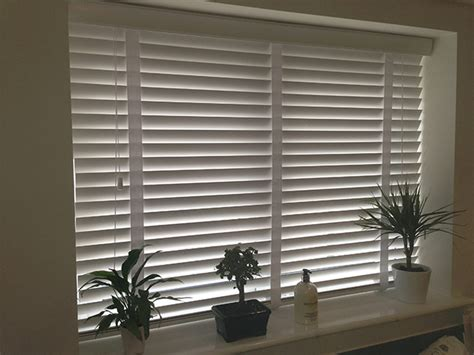 window blinds or curtains