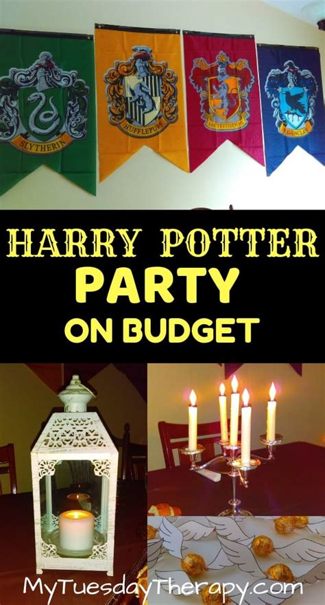 host  magical harry potter party  small budget