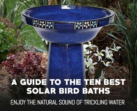 top  solar bird baths complete guide  reviews