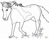 Coloring Horse Mare Miniature Horses Outline Mini Pony Template 85kb 964px 1200 sketch template