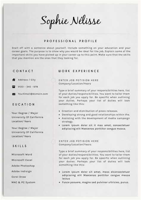 Professional Resume Word Template by Best 25 Professional Resume Template Ideas On