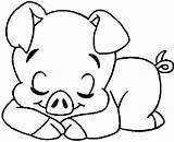 Coloring Pig Pigs Animal Sleeping Animals Colouring Sheets Printable Drawings Template Kidsandcolors Patterns Colorir Para Desenhos Imprimir Animais Pintar Porcos sketch template