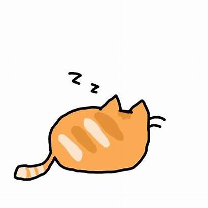 Cat Animated Animations Kawaii Gifs Anime Super