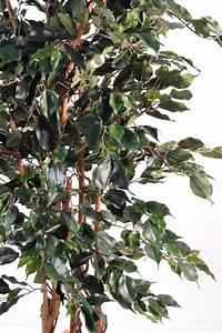 Arbre D Intérieur : arbre artificiel interieur conceptions de maison ~ Preciouscoupons.com Idées de Décoration