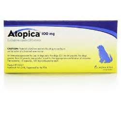 cyclosporine for cats atopica skin allergies and itch relief for dogs petcarerx