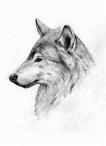 Wolf side profile thing by smiles12345 on DeviantArt