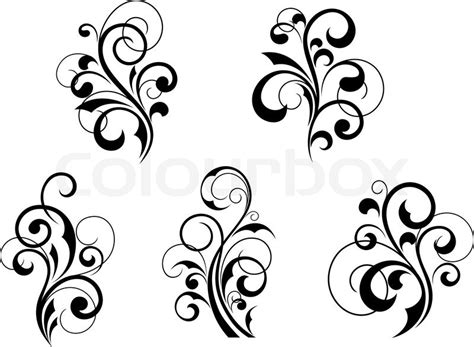 Set Schöne Florale Elemente Und Motive Auf Weißem
