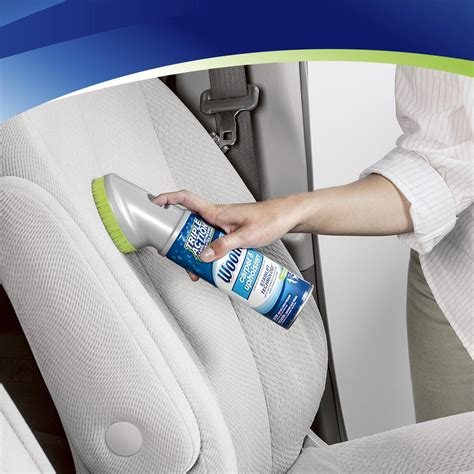 Amazon.com: Woolite Carpet and Upholstery Cleaner Stain