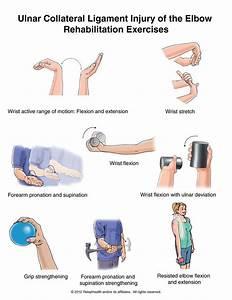 Ucl Injury Of The Elbow Rehabilitation Exercises