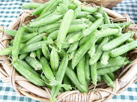 types of peas thoughts on all types of peas by colony creek farm