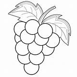 Grapes Coloring Pages Fruit Easy Pencil Drawings Bestcoloringpagesforkids Sheets Animal sketch template