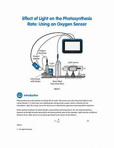 Effect Of Light On Photosynthesis With An Oxygen Sensor By Fourier Education