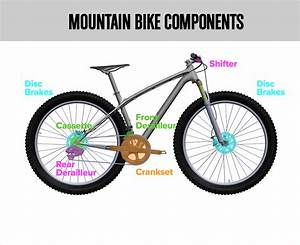 Guide To Bike Components